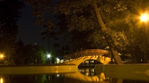 pod lacul botosani
