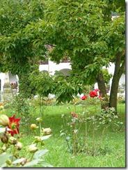 La Manastirea Agapia