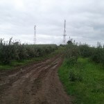 off road noroi reghin