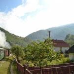 Cu mocanița pe Valea Vaserului