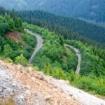 Acces auto munții Călimani