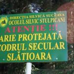 Codrii seculari Slatioara